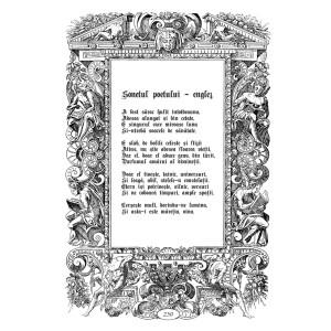 Lucian Strochi - Sonetul poetului