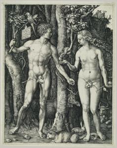 Albrecht-Durer-Adam-si-Eva