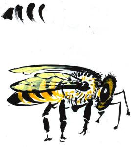 Albina - ilustraţie de George Romilă