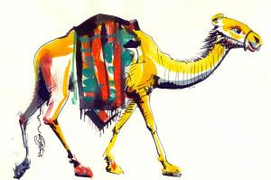 Dromaderul ilustratie de George Romila