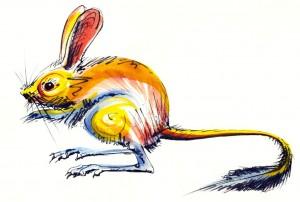 Lucian-Strochi-Jerboa-ilustratie-de-George-Romila