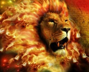 leul-soarelui