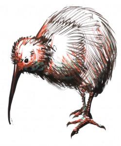 Kiwi - ilustratie de George Romila