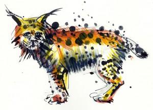 Linxul - ilustratie de George Romila