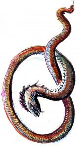 Midgardul ilustratie de George Romila