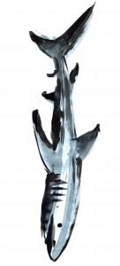Rechinul - ilustratie de George Romila