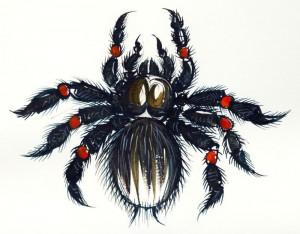 Lucian-Strochi-Tarantula-ilustratie-de-George-Romila
