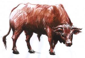Taurul - ilustratie de George Romila