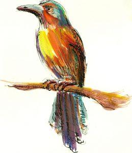 XILIPA - ilustratie de George Romila